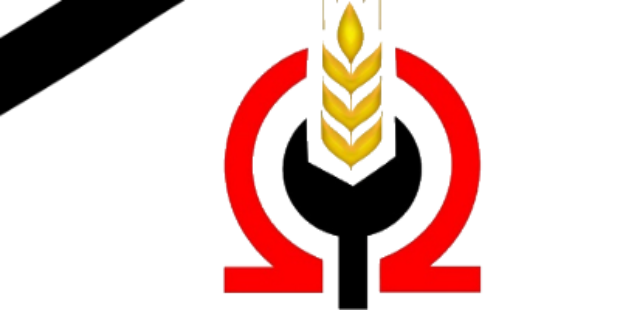 مصر بين بسالة جيش   وتآمر مريب